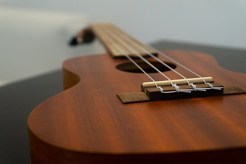 Rosewood Results in Warmer Tones as It Absorbs Stray Overtones