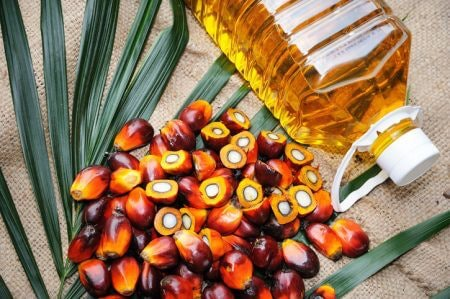 Palm Oil or Vegetable Oil is Used to Bring Down the Costs