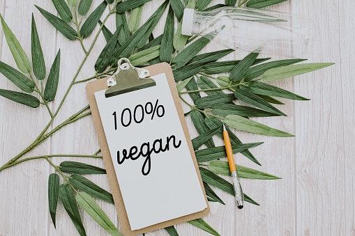 Plant-Based/Vegan Milk Powder Is Perfect for a Vegan Diet