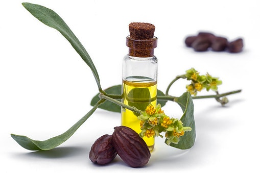 Coconut Oil, Argan Oil, and Jojoba Oil Strengthen Hair Strands and Follicles