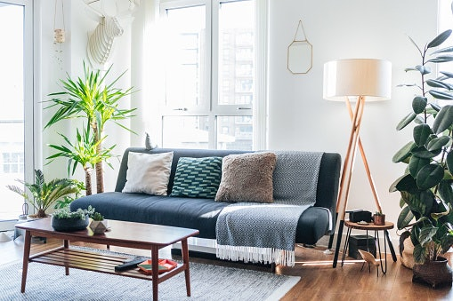 Add Plants to Your Home Decor