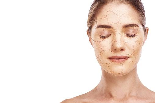Dry Skin? Choose Nourishing Oils Like Olive, Argan Etc,
