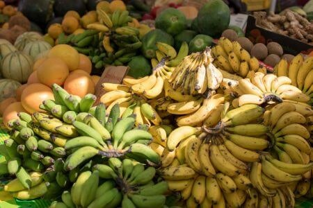 Decide Between Chips Made from Unripe and Ripe Bananas