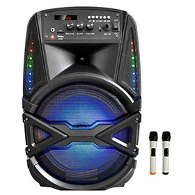10 Best Karaoke Systems in India 2021 (Acoosta, Takara, and more) 3