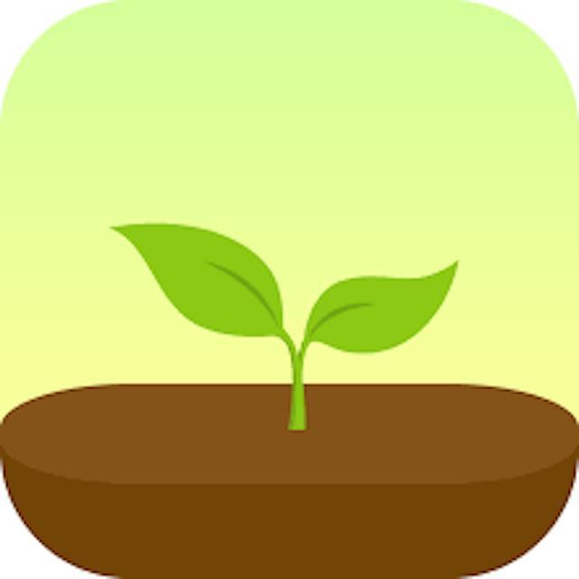 Seekrtech Forest: Stay Focused 1