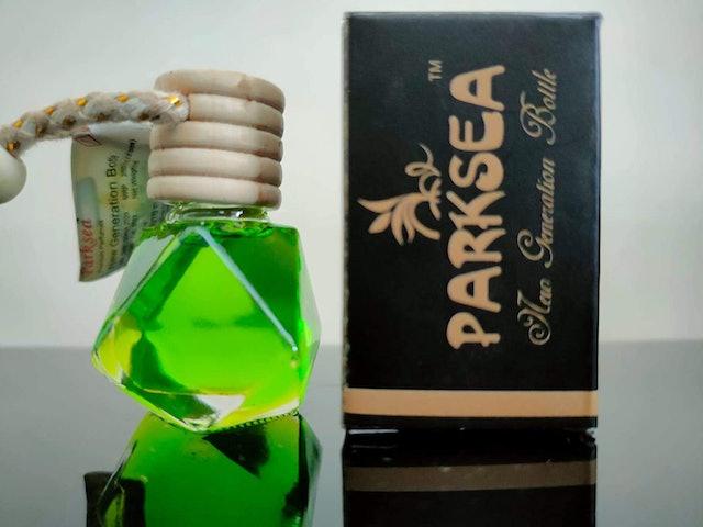 Parksea Bull Rider 1