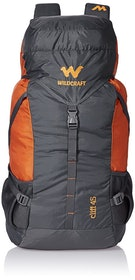 Top 10 Best Backpacks in India 2020 (Wildcraft, Skybags, and More) 4