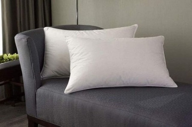 Linenwalas Goose Down and Feather Pillows 1