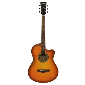 Top 10 Best Guitar for Beginners in India 2020 5